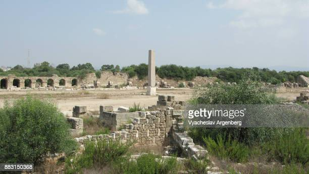 roman hippodrome in tyre, lebanon - argenberg stock pictures, royalty-free photos & images