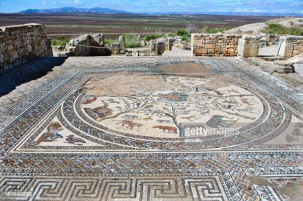 roman mosaic en volubilis, marruecos - volubilis fotografías e imágenes de stock