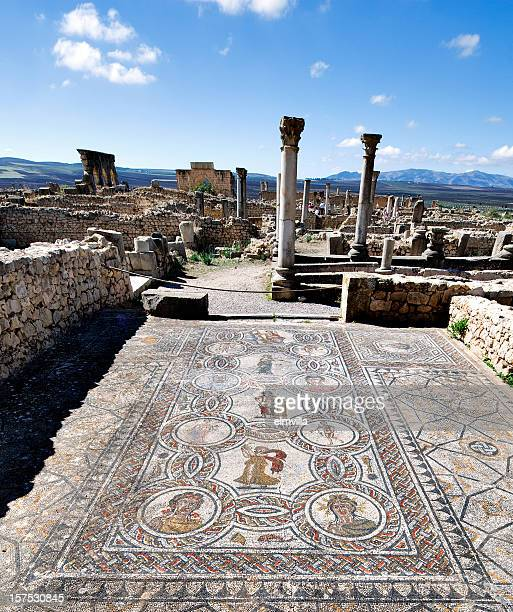 Roman Mosaic at Volubilis, Morocco