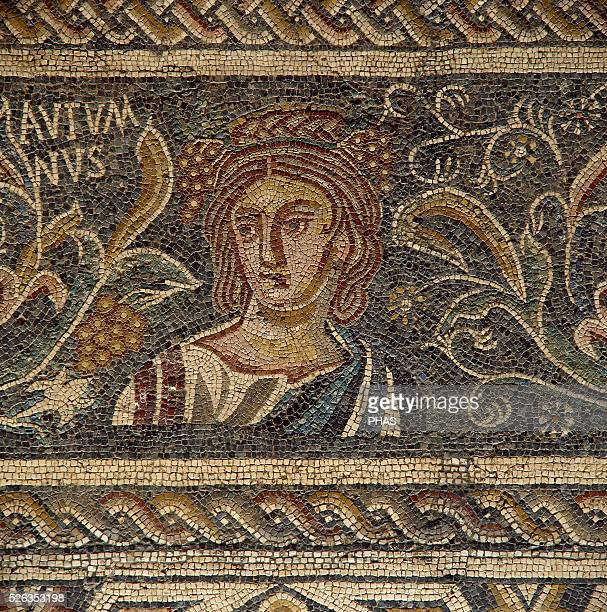Roman mosaic Female figure depicting the Autumn 4th century It comes from Villa Las Tiendas Merida National Museum of Roman Art Merida Spain