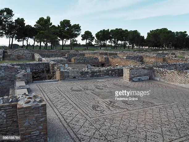 roman mosaic pavement in venosa, basilicata region, southern italy - バシリカータ ストックフォトと画像