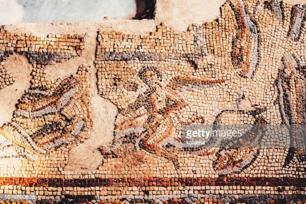 roman mosaic - treasuregold stock pictures, royalty-free photos & images
