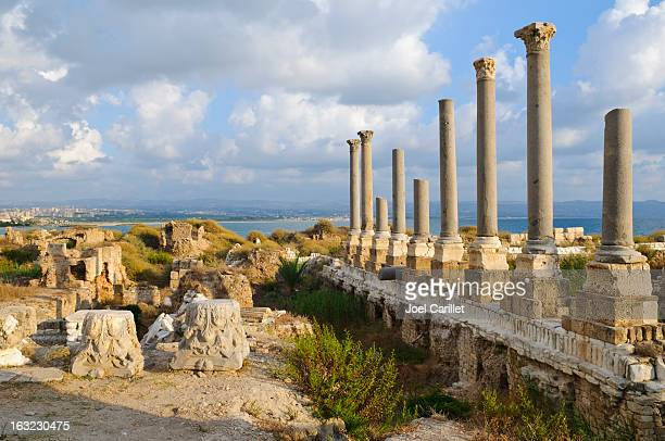 roman ruins by the sea in tyre, lebanon - lebanon stock photos and pictures