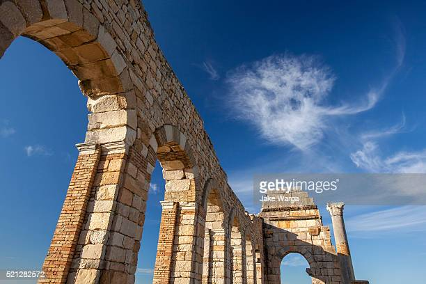 roman ruins in volubilis, morocco - jake warga stock pictures, royalty-free photos & images