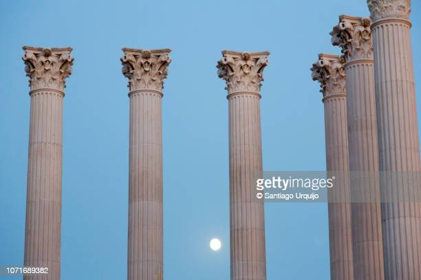 roman temple under the moonlight - roman stock pictures, royalty-free photos & images