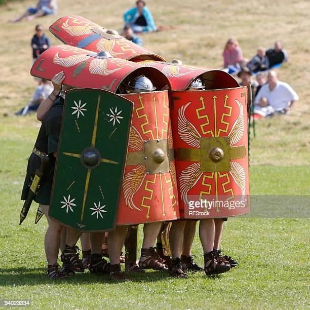Roman Testudo (Tortoise)