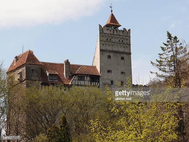 view to the Castelul Bran
