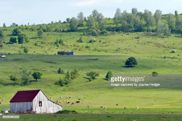 Romania - Carpathian Mountains, Transylvania