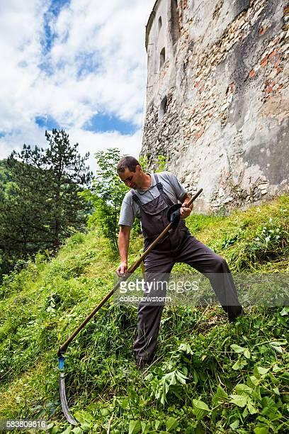 Romanian farmer in field using scythe, Bran, Romania