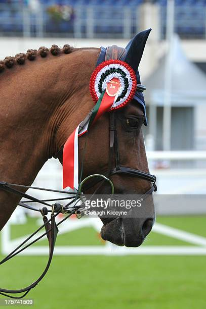 Romanov on which Bertram Allen and of Ireland won first prize in the RDS Dublin Horse Show 'Irish Sports Council Classic' International Competition...
