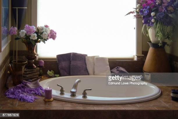 Romantic Bathtub and Fixtures Interior.