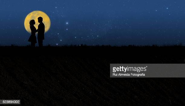 romantic couple moonlight silhouette - moonlight lovers stock-fotos und bilder