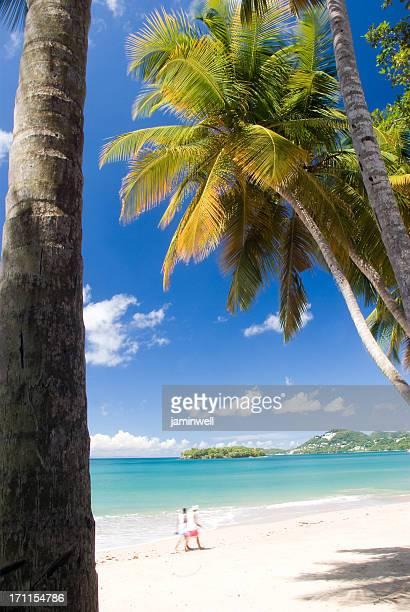 romantic couple walking on Caribbean beach