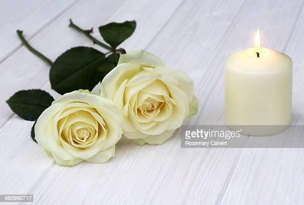 Romantic cream roses with lighted candle on white