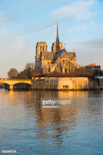 romantic end of the day in paris and cathedral notre dame - fluss seine stock-fotos und bilder