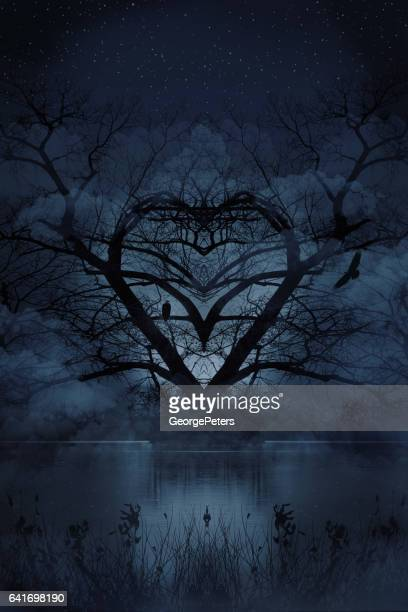 romantic heart shaped tree with courting eagles and night sky - perching stock photos and pictures
