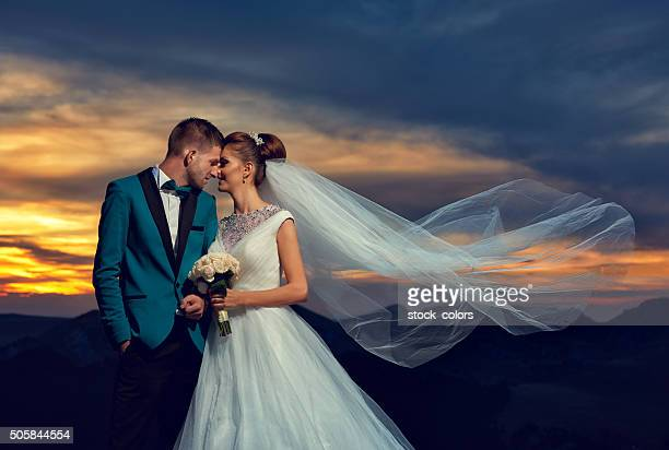 romantic moments for us - wedding veil stock photos and pictures