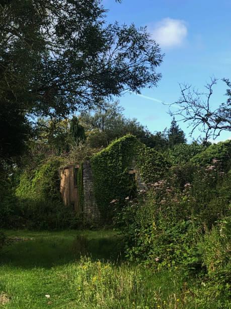 Romantic Ruined Farmhouse