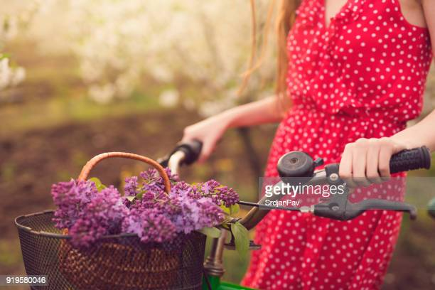 romantic smell of spring - purple lilac stock pictures, royalty-free photos & images