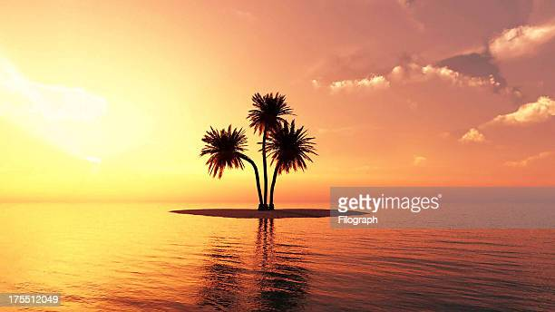 Romantic Summer Beach Sunset