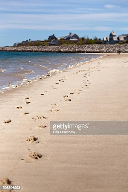 romantic walk on the beach - lisa cranshaw stock pictures, royalty-free photos & images