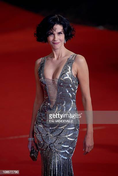 Rome Film festival French Actress Alessandra Martines attends a Premiere for 'Into The Wild' in Rome Italy on October 24 2007