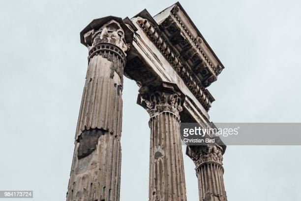 rome roman column - ancient civilization stock photos and pictures