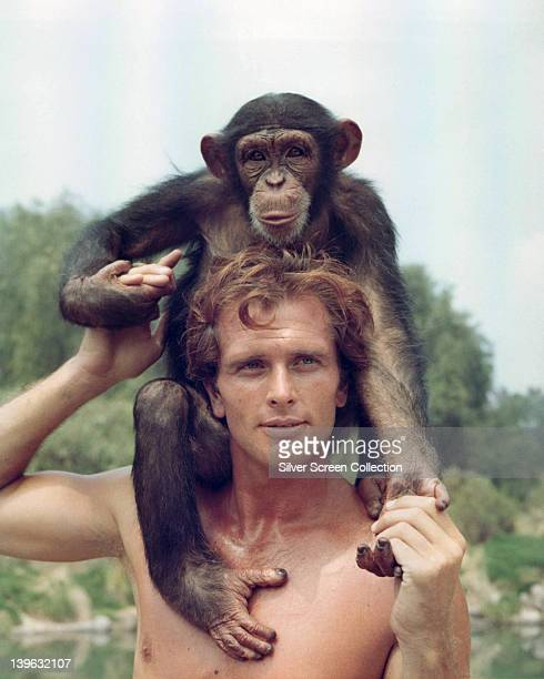 Ron Ely US actor posing bare chested with a chimpanzee sitting on his shoulders in a publicity portrait issued for the US television series 'Tarzan'...