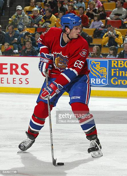 Ron Hainsey of the Chicago Wolves looks to pass as he controls the puck during a American Hockey League game against the Hamilton Bulldogs at Copps...