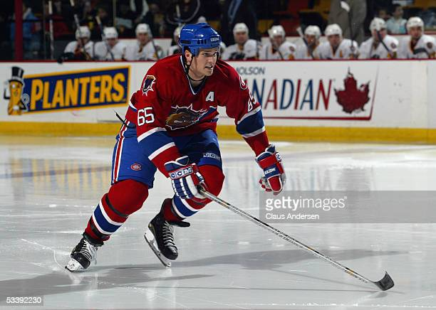 Ron Hainsey of the Chicago Wolves skates during a American Hockey League game against the Hamilton Bulldogs at Copps Coliseum on December 3 2004 in...