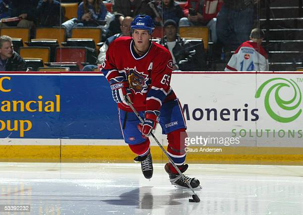 Ron Hainsey of the Chicago Wolves skates with the puck during a American Hockey League game against the Hamilton Bulldogs at Copps Coliseum on...