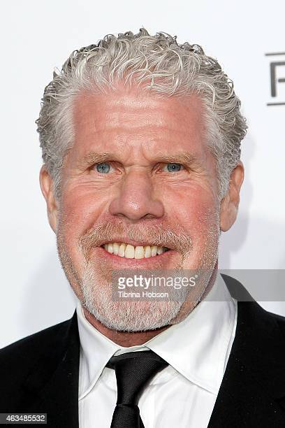 Ron Perlman attends the MakeUp Artists and Hair Stylists Guild Awards at Paramount Theater on the Paramount Studios lot on February 14 2015 in...