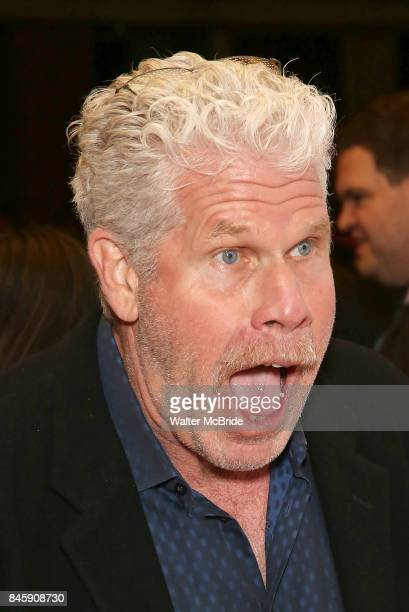 Ron Perlman attends 'The Shape of Water' premiere during the 2017 Toronto International Film Festival at The Elgin on September 11 2017 in Toronto...