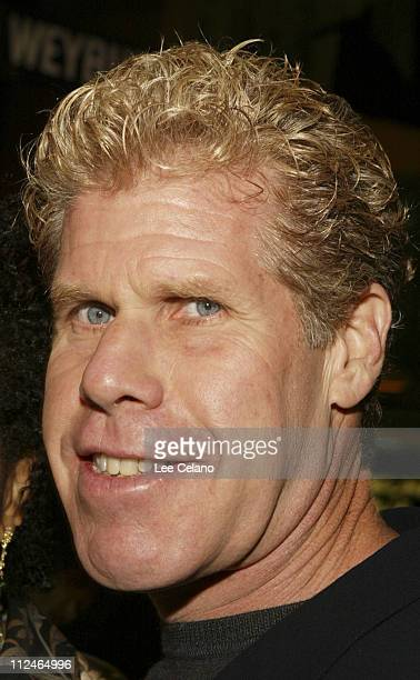 "Ron Perlman during ""Hellboy"" Los Angeles Premiere - Red Carpet at Mann Village Westwood in Westwood, California, United States."