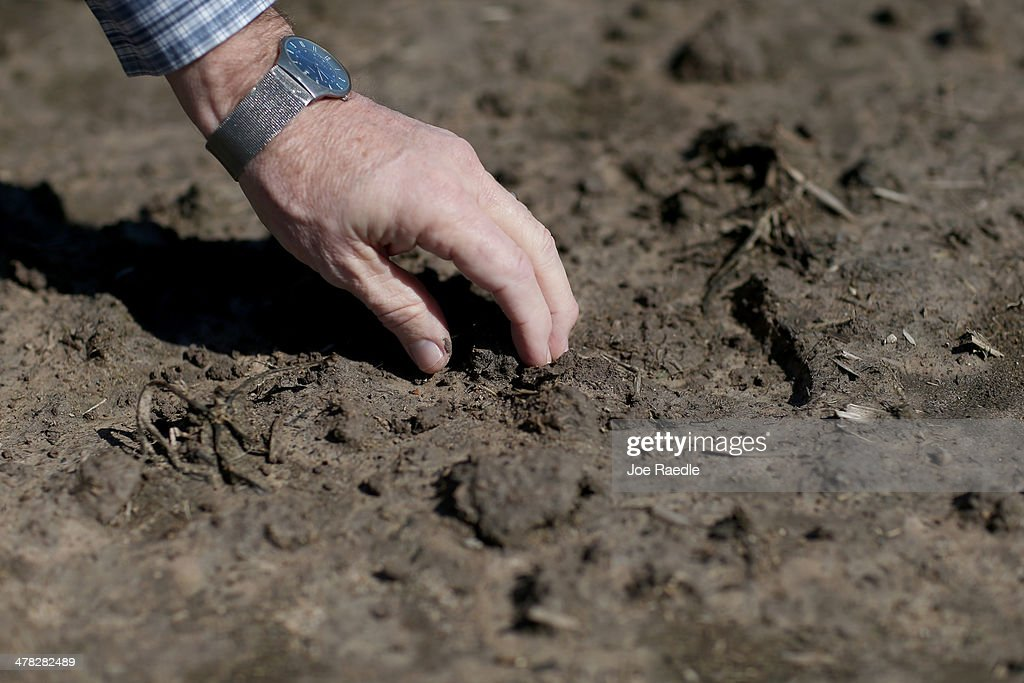 Ronald Gertson, a fourth generation rice farmer, touches the soil in his rice field that may not be planted this year due to severe drought on March 12, 2014 in Lissie, Texas. Due to a severe drought afflicting the region, the facility closed as farmers like Gertson do not have enough water to grow a sufficient rice crop. Recently the Texas Commission on Environmental Quality agreed to cut off water deliveries to most rice farmers in the Lower Colorado River Basin for the third straight year as the lakes in central Texas are only 38 percent full.