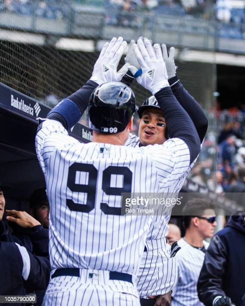 Ronald Torreyes of the New York Yankees hi fives Aaron Judge after Judge's home run during the game against the Tampa Bay Rays at Yankee Stadium on...