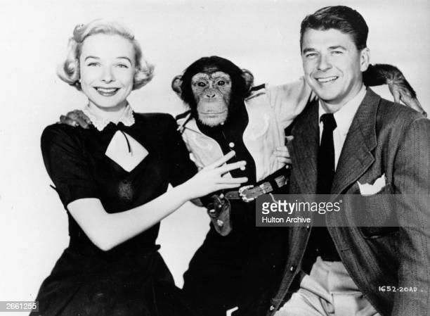 Ronald Wilson Reagan posing with Bonzo the chimpanzee in a publicity shot for the 1951 film 'Bedtime for Bonzo' He later became the 40th President of...