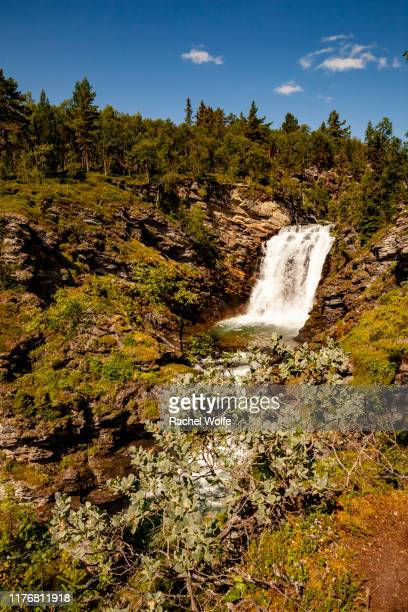 ronde waterfall - rachel wolfe stock photos and pictures