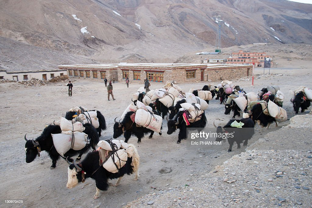 Rongbuk Monastery, Mt Everest, China : Stock Photo