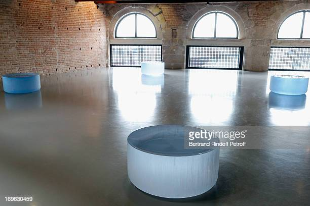 Roni Horn's 'Well and Truly' at the Opening of the Fondazione Pinault Punta della Dogana on May 29 2013 in Venice Italy