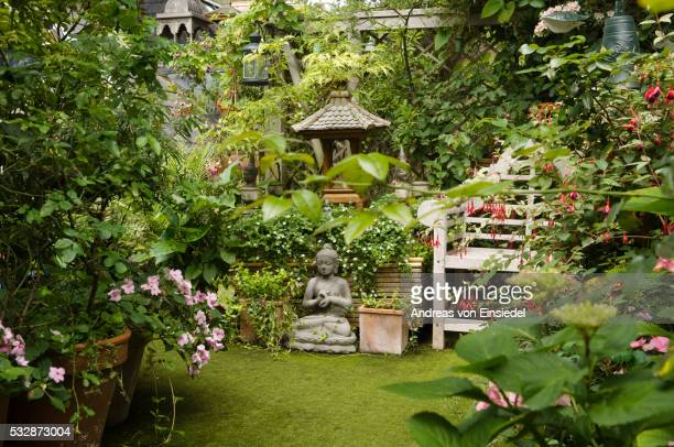 Roof garden with potted plants in West London