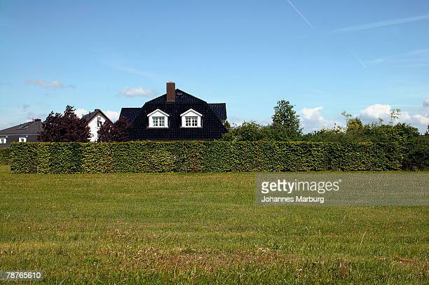 Roof of a house above a hedgerow