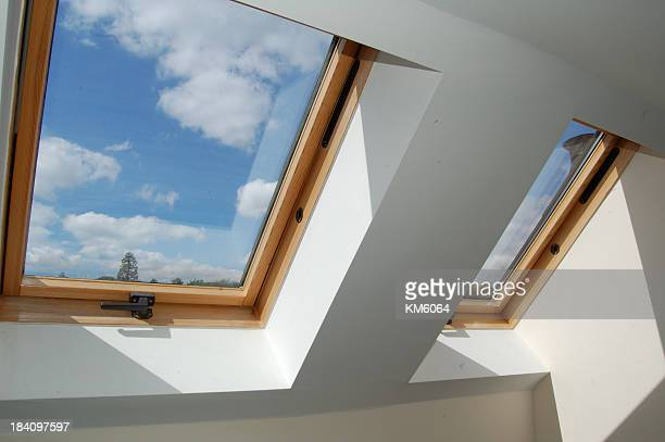 roof skylight windows