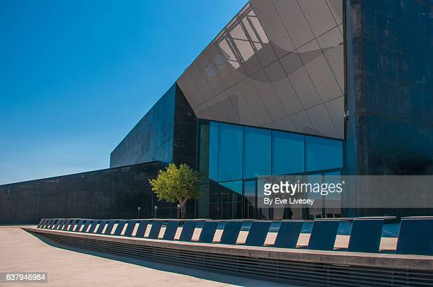 Roof Terrace Of the Caixa Forum, Cadrete, Zaragoza, Zaragoza, Spain, Madrid, Europe