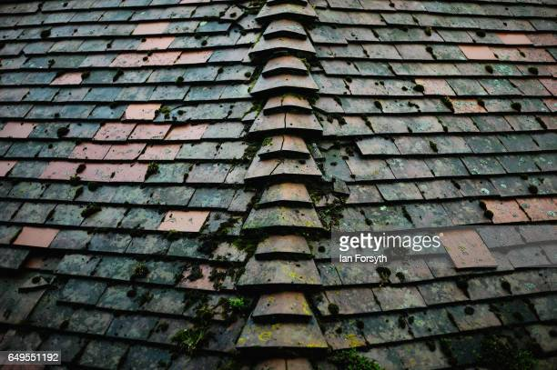Roof tiles are covered in moss on a home in Robin Hood's Bay on the North Yorkshire coast on March 8 2017 in Robin Hood's Bay United Kingdom Robin...