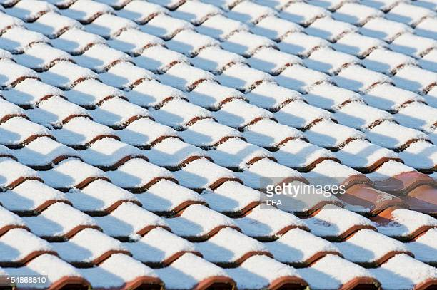 Roof tiles are covered in snow in Bamberg southern Germany on October 28 2012 The first snow of the season fell in parts of southern and eastern...