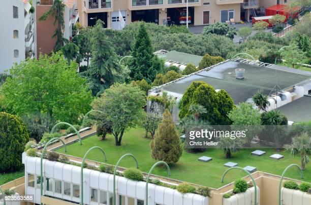 Roof Top Garden or Gardens Monaco