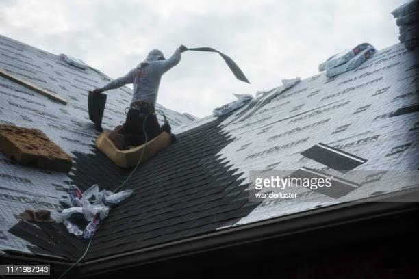 techo de una casa de rancho - culebrilla enfermedad fotografías e imágenes de stock