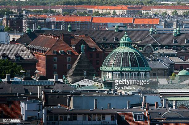 roofs of copenhagen - dorte fjalland photos et images de collection