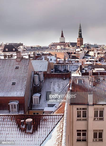 roofs of Copenhagen